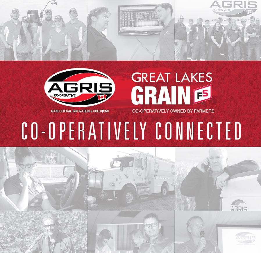 AGRIS-GLG-RecruitmentBrochure_coverImage_cropped.JPG